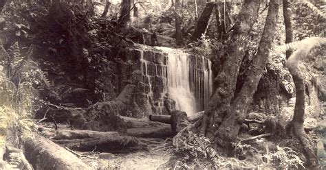 Photographs of Silver Falls, Fern Tree Bower, Mount